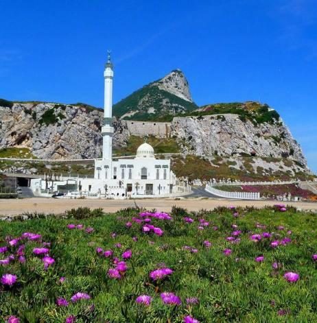 mosquee-gibraltar-22-02-2011